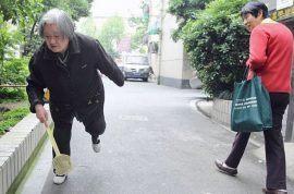 Ruan Tang, Chinese pensioner has spent 8 hours a day, seven days a week for 14 years swatting flies.