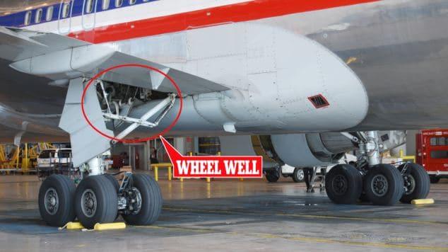 Teenage stowaway survives in the wheel well of Hawaiian Airlines