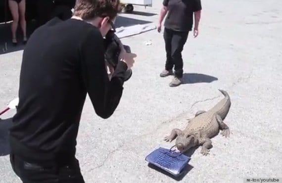$100K Birkin crocodile bag to alligator