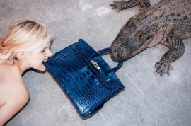 Photographer Tyler Shield feeds $100K Birkin crocodile bag to alligator