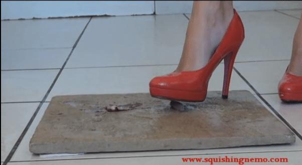 Squishing Nemo: School girl 'crush' videos self stomping fish