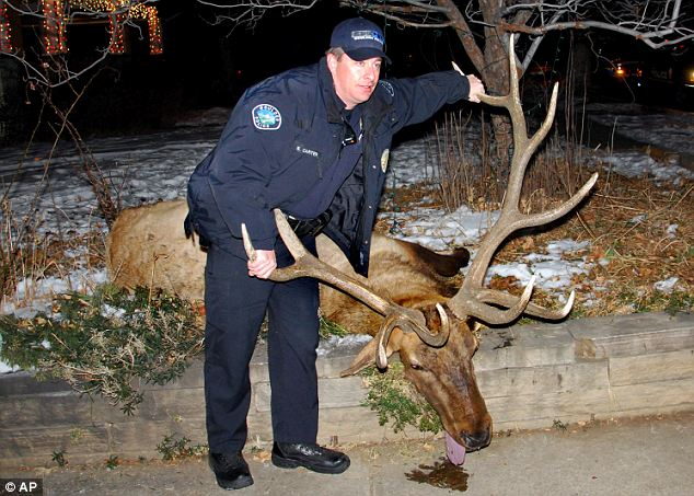 Sam Carter Ex Boulder Colorado cop,