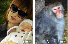Vladimir (Vova) Verbitsky, 6 week old baby killed after escaped monkey rips open his head.