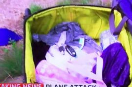 Colin Brazier, Sky reporter goes through MH17 victim's luggage and is hated