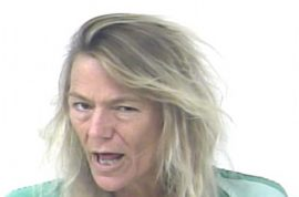 Elizabeth Highley, 56 arrested after 25 year old man resists sexual advances