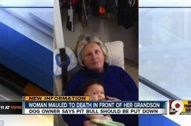 Cindy Whisman mauled to death by family pit bull whilst toddler grandson watches