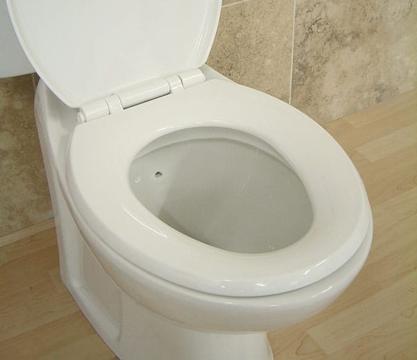 Swedish burglar who defecates in victims's toilet