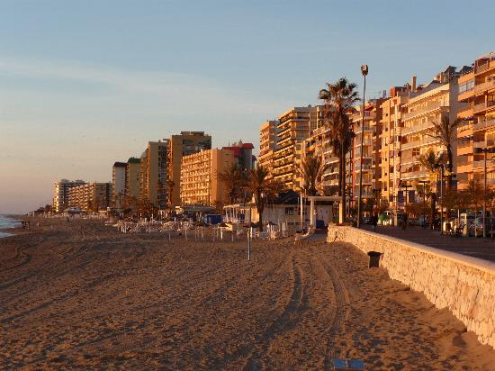 Woman found beheaded by brother in Malaga