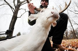 Jerry Kinnaman, deer hunter gets death threats after posting pictures of rare albino buck on Facebook
