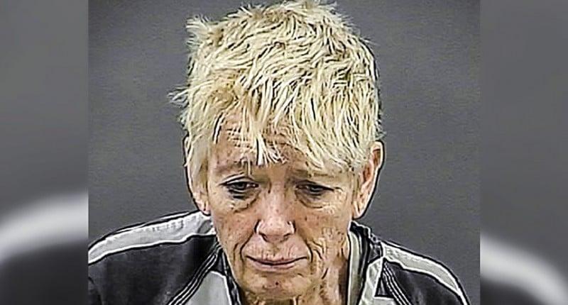 Cynthia V. Anderson