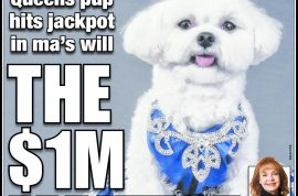 Rose Ann Bolasny to leave her Maltese dog $1 million. Reckons pooch is in danger