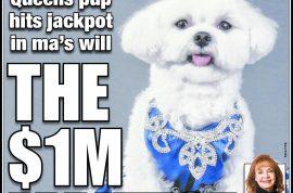Rose Ann Bolasny to leave her Maltese dog $1 million. Reckons pooch is in danger