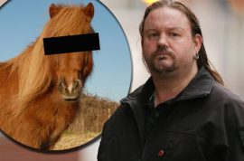 Did Alan Barnfield have sex with a Shetland pony? Smelt of hay, horses.