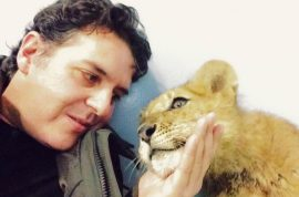 Lion cub starved by Spanish circus so he could stay small and cute for visitors