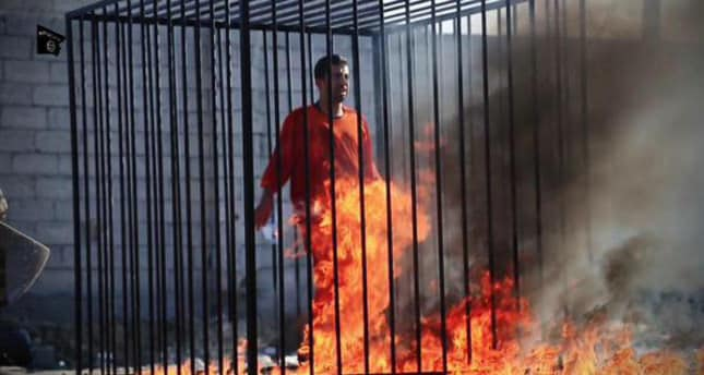 Jordanian pilot burned alive