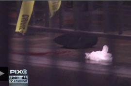 Vigilante justice? Retired Corrections officer fatally shoots subway rider after altercation