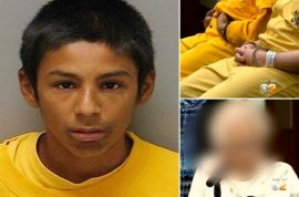 Schoolboys jailed for 30 years for raping 86 year old. Poured bleach down her throat