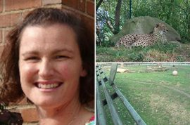 Michelle Schwab, idiot mother drops two year old son in cheetah enclosure