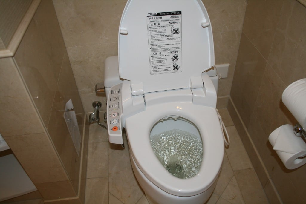 Japanese man flushes dead wife's ashes down toilet