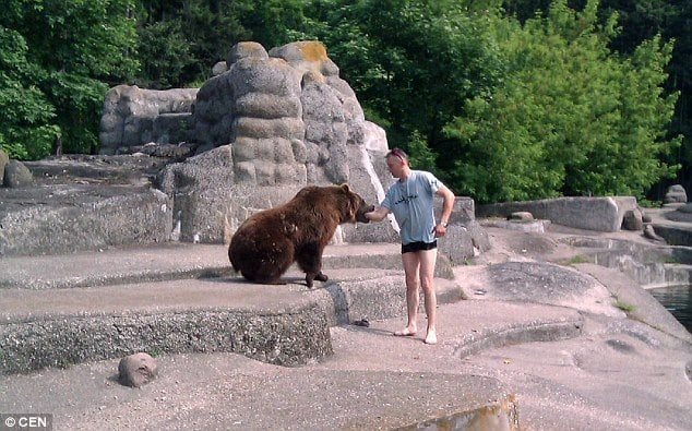 Polish zoo bear enclosure