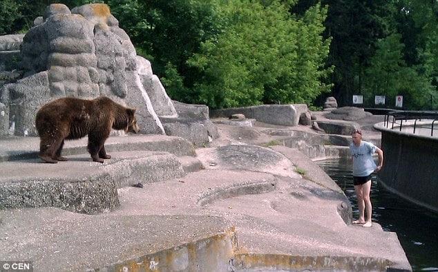 Polish zoo bear enclosure