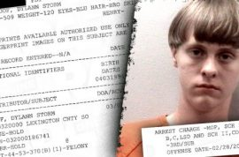 Dylann Roof boasted planning massacre: I am looking to kill a bunch of people