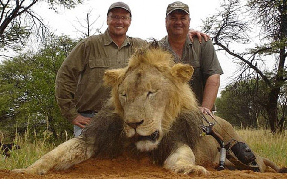 Walter Palmer Cecil lion hunter