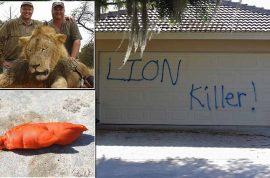 Walter Palmer hires armed security guards: 'Your attacks have gone too far!'