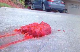 Walter Palmer's Florida vacation home vandalized: Lion Killer and orange pig's feet.