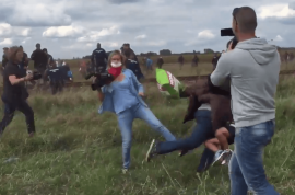 Petra Laszlo, Hungary reporter trips fleeing Syrian refugees. A history of violence.