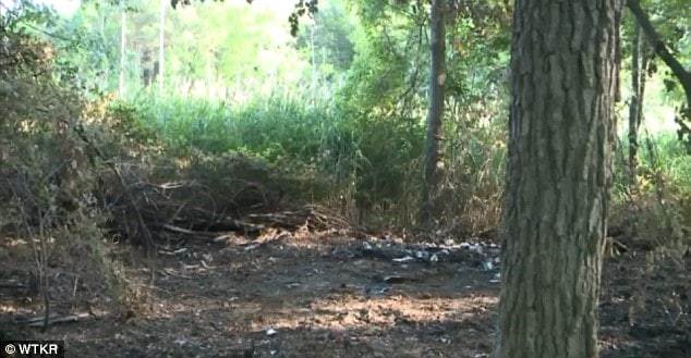 Arthur M. Vieira pleads guilty to burning his dog alive