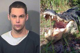 Matthew Riggins, idiot burglar eaten by alligator while hiding from cops