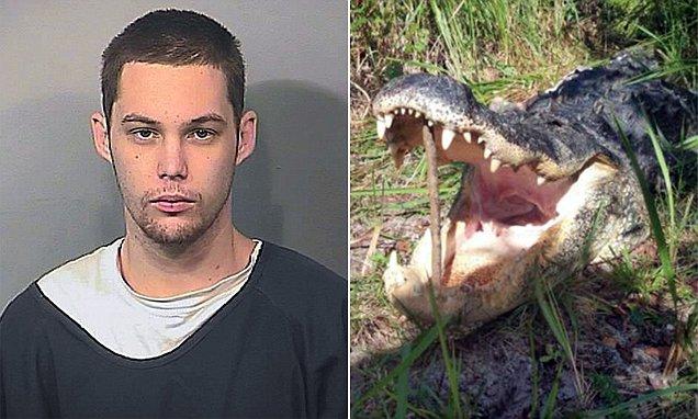 Matthew Riggins burglar eaten by alligator
