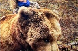 Pictures: Theresa Vail former Miss Kansas illegally killed grizzly bear