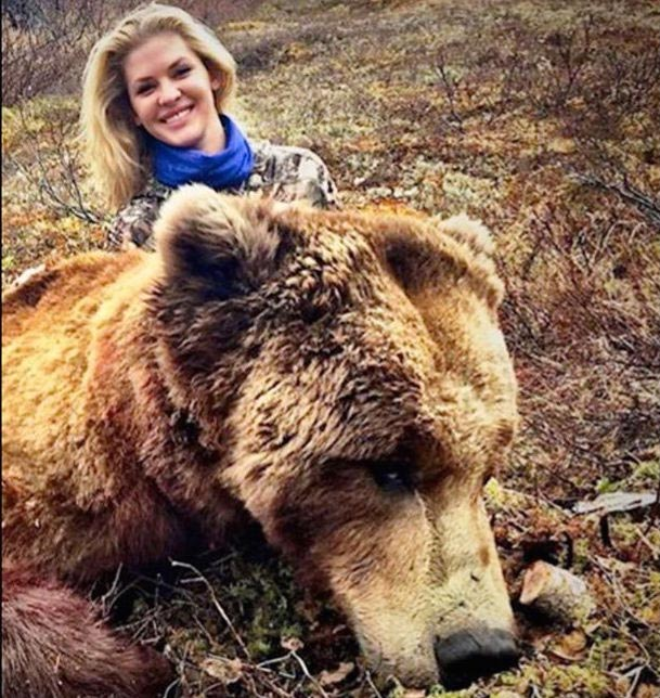 Theresa Vail former Miss Kansas illegally killed grizzly bear