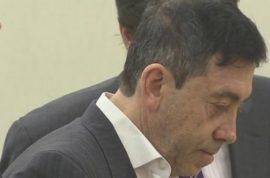 Julius Reich lawyer denies stabbing wife Robin Goldman 22 times