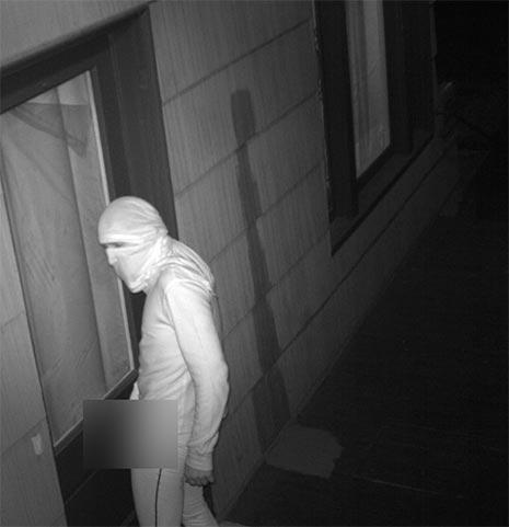 Seattle Serial masked masturbator