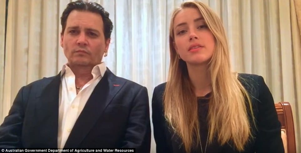 Johnny Depp and Amber Heard leniency video