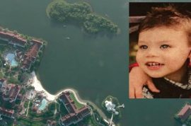 Who's to blame? Lane Graves 2 year old alligator victim's body recovered 'intact'