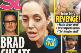Brad Pitt cheated with Marion Cotillard says Angelina Jolie's private eye