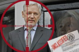 Who cut Julian Assange's internet access and why?