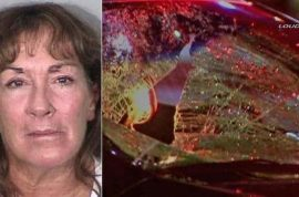 Sherri Lynn Wilkins drunk drug counselor sentenced 25 years jail for driving with victim on windshield for 2 miles