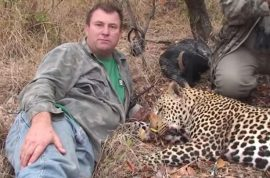 Internet cheers: Theunis Botha big game hunter killed when shot elephant collapses killing him