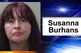 Susanna Burhans Alabama mail carrier: How I fed a dog meatballs laced with nails