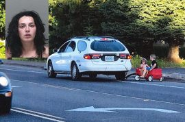 Alana Donohue idiot mom who towed her kids in red wagon pleads guilty