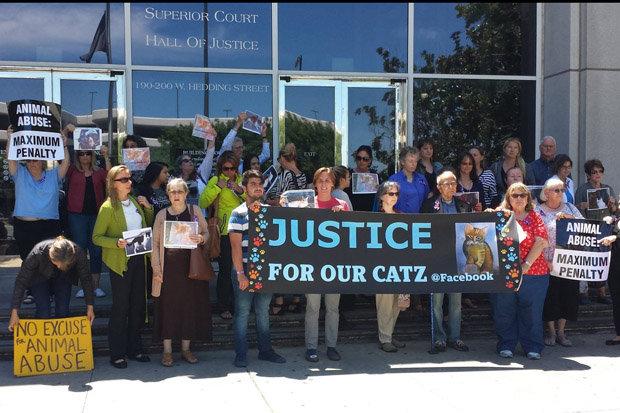 robert farmer san jose serial cat killer sentenced why i tortured and killed 21 cats