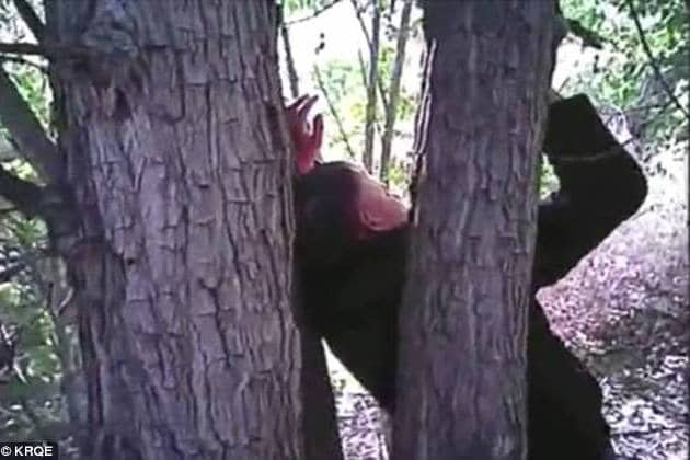 Video shows rescue of man with hands nailed to a tree