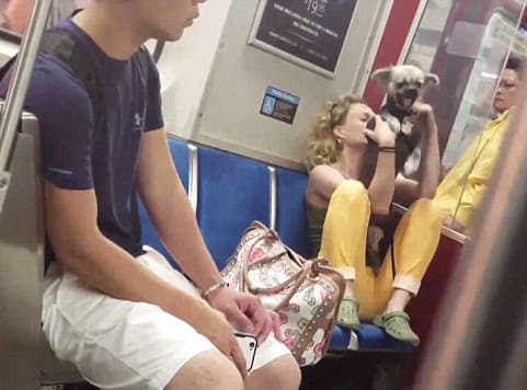 Toronto subway woman biting her dog goes