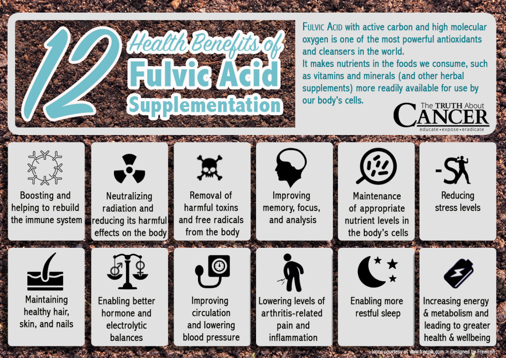 The Benefits Of  Fulvic Acid