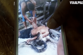 Photos: Thai man strangled to death by 21ft python kept in glass jar